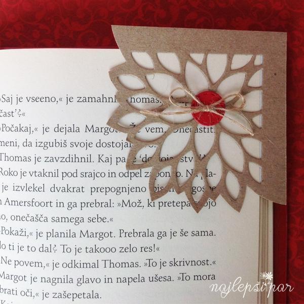 roža-v-kotu2