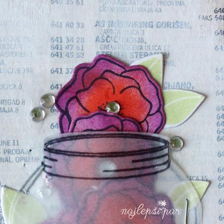 divje-vrtnice-18