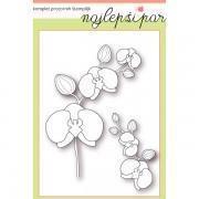 Orhideje---Š