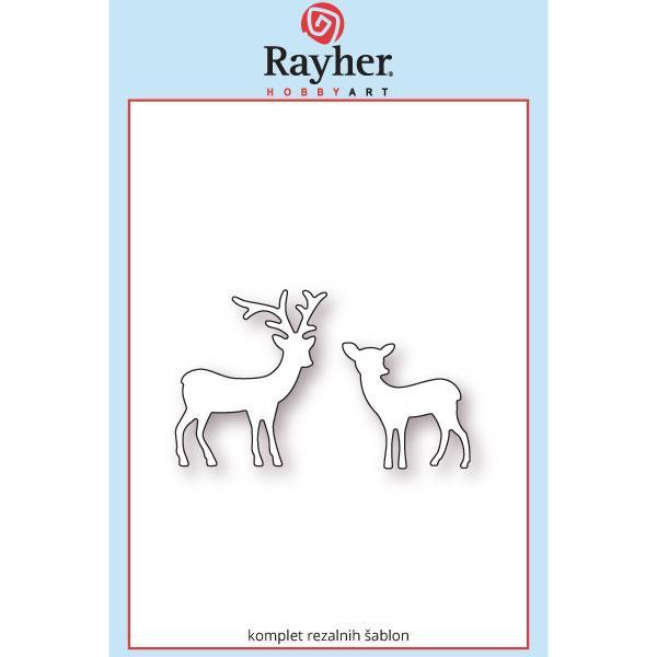 rayher v-gozdu
